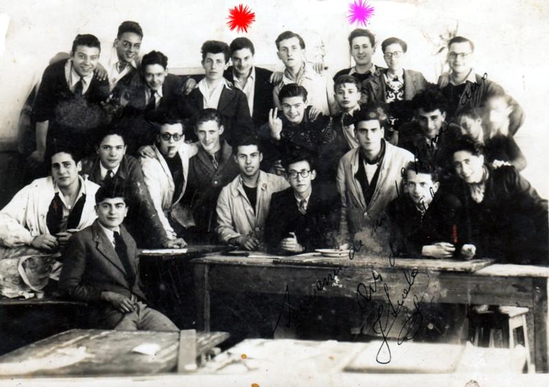 nejadartsdcosdenice194748.jpg