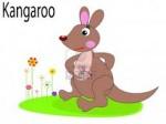 KANGOUROU 3